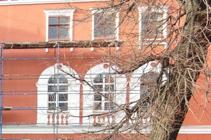 Воронежцы могут посодействовать  сформировать «зелёный пояс» города