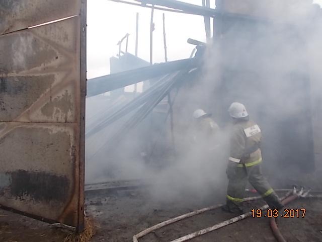 Ферма выгорела ввоскресенье вдеревне Тульской области