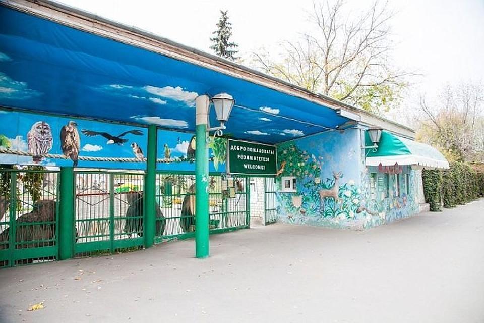 Старую и новейшую части казанского зоопарка соединит тоннель