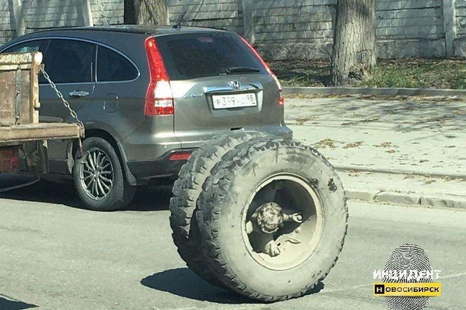 КамАЗ впроцессе движения «потерял» два колеса вНовосибирске