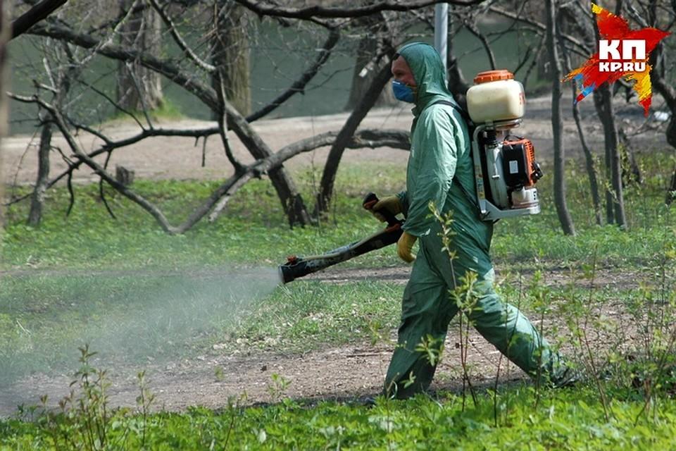 Лесные парки Екатеринбурга обработают отклещей до19мая