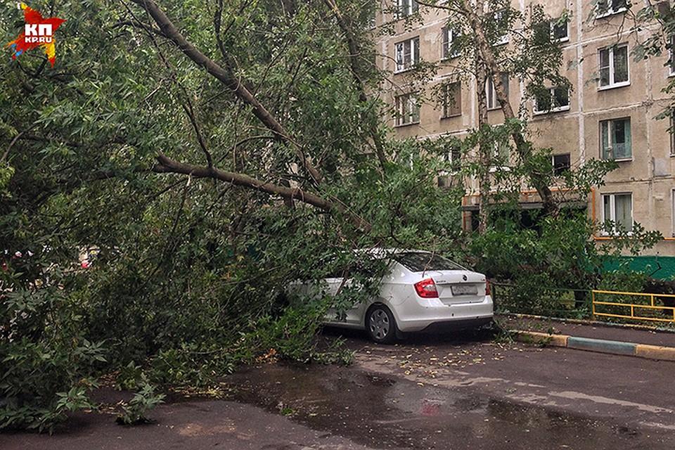 Экстренное предупреждение МЧС: вЯрославской области предполагается гроза