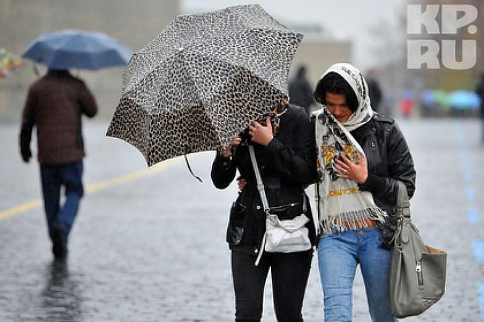 МЧС предупреждает жителей столицы онадвигающейся грозе исильном ветре