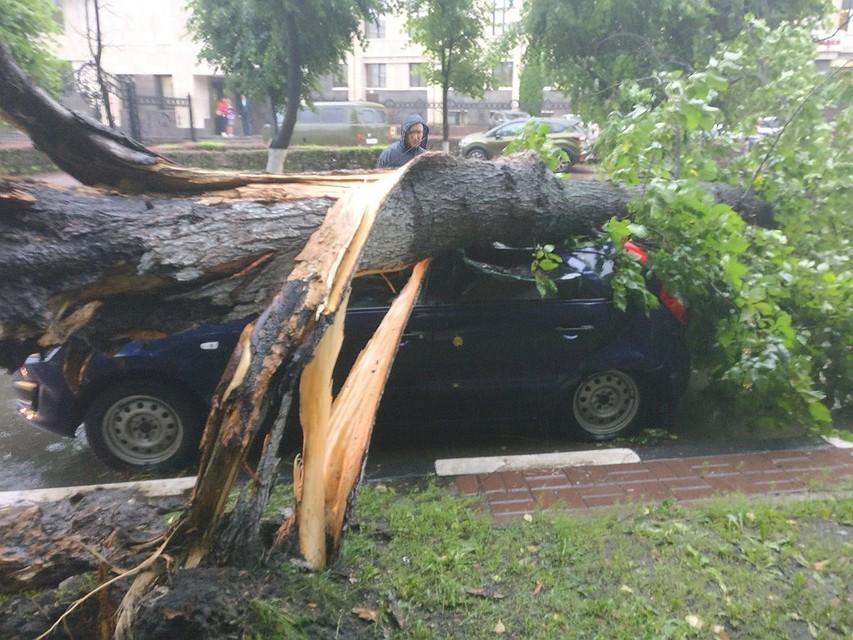 Шторм вУльяновской области нанес вред свыше 200 млн руб.
