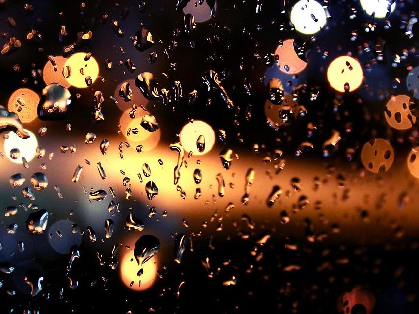 Четверг несет Владивостоку ветер идождь