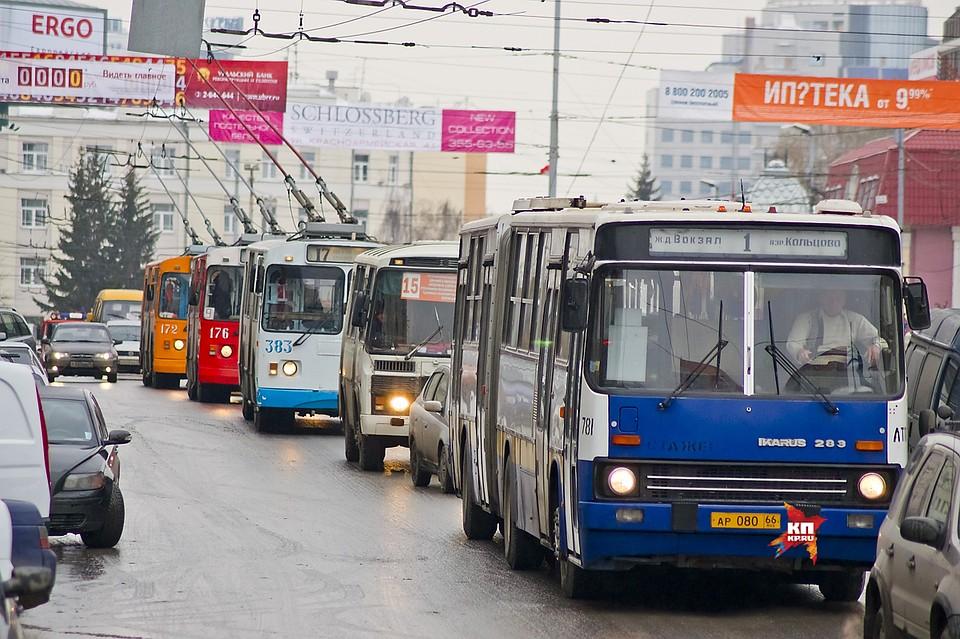 Полицейские отыскали рекламу проститутошной намуниципальном автобусе ивоспользовались ееуслугами