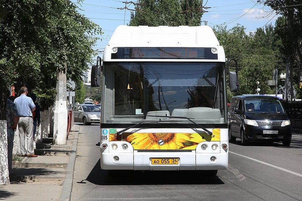 ВВолгограде студентов будут возить напары спецавтобусами