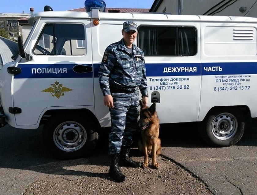 ВУфе служебный пес помог задержать правонарушителя