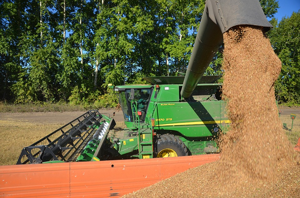 Новосибирская область будет поставлять зерно вАзию через терминал вПриморье