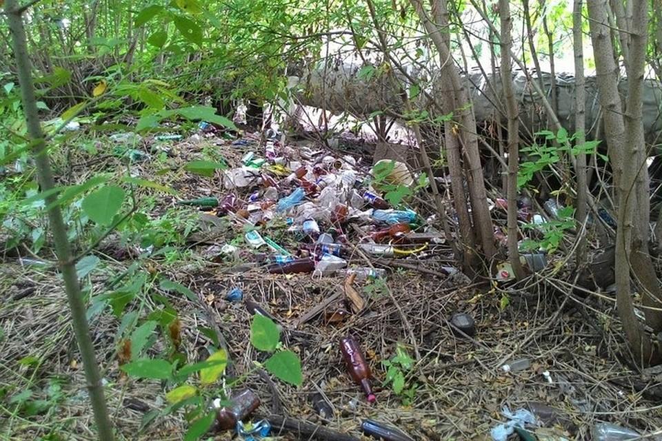 ВКемерове вновь отыскали нелегальные свалки