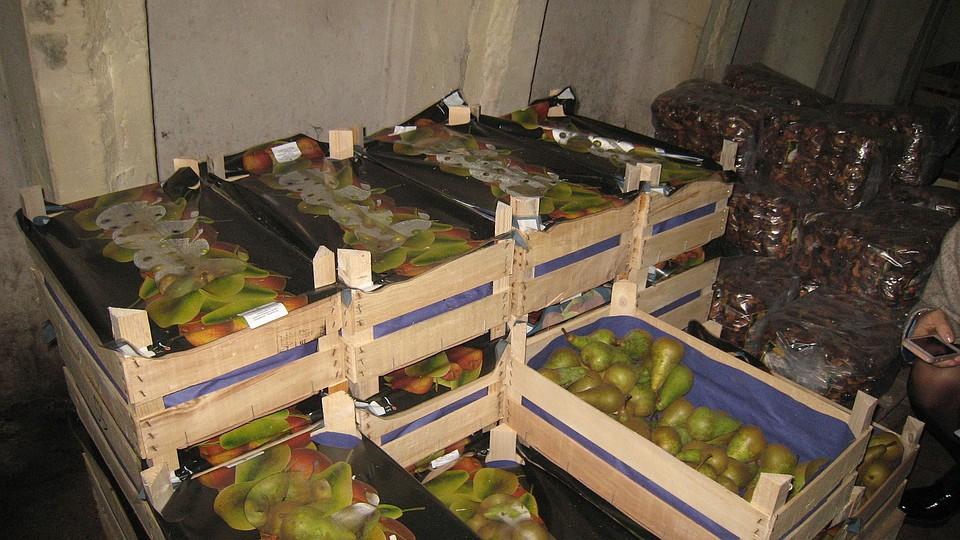 ВПерми уничтожили неменее тонны запрещенных фруктов
