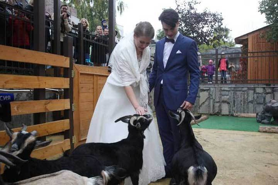 Первая свадьба проходит вМосковском зоопарке