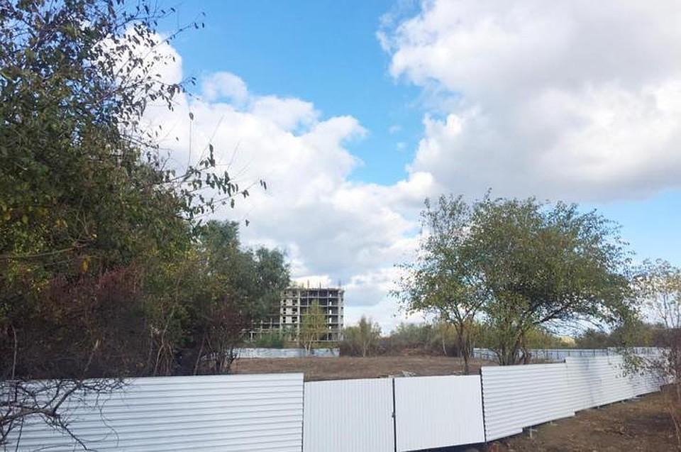 ВКраснодаре остановили стройку, где рабочие нелегально срубили 39 деревьев