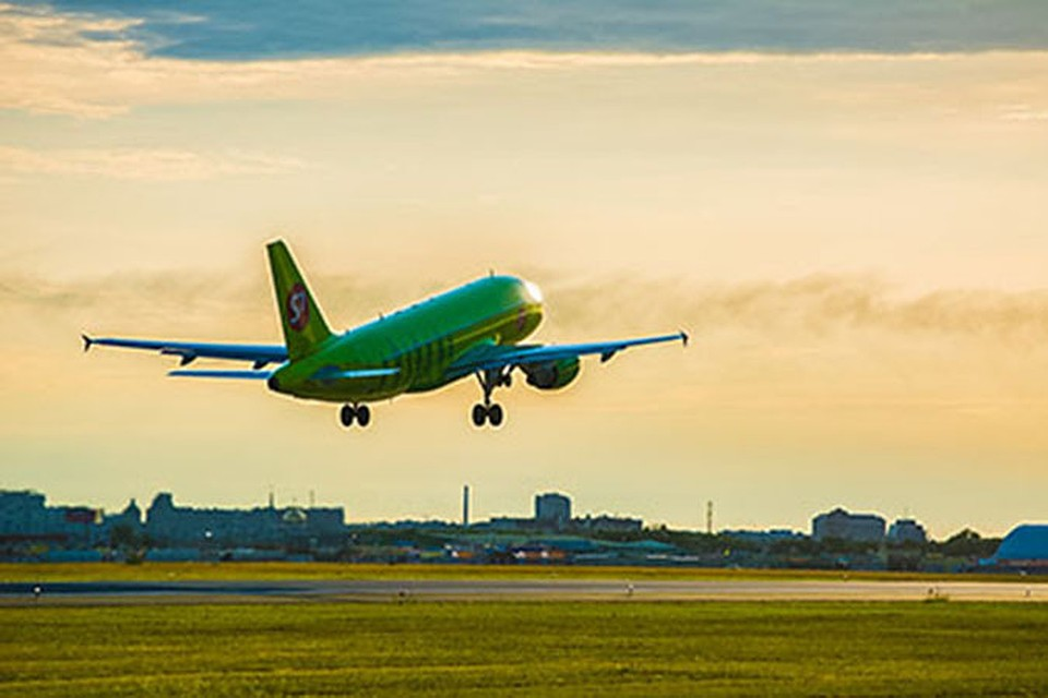 Рейс изОмска задержали насутки из-за птицы вдвигателе самолета