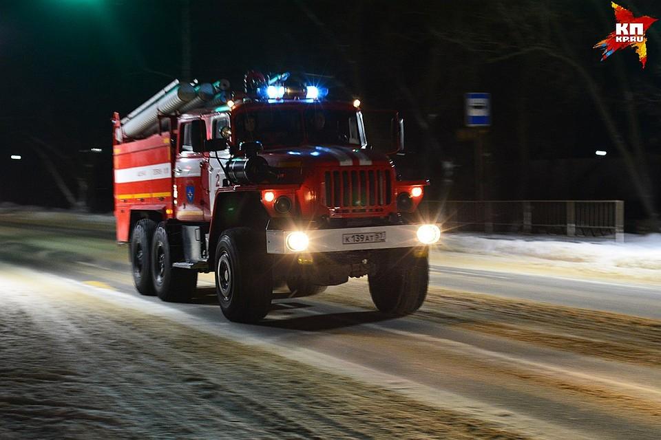 ВОрловской области впожаре погибли два человека