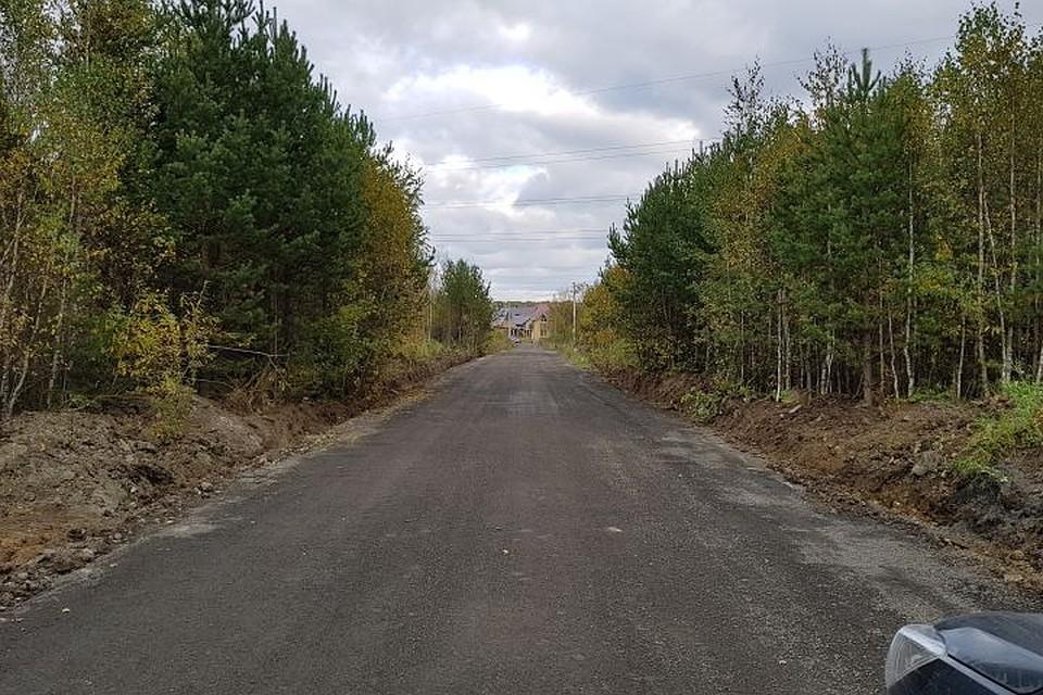 Граждане заасфальтировали дорогу кекатеринбургскому поселку Садовый за собственный счет