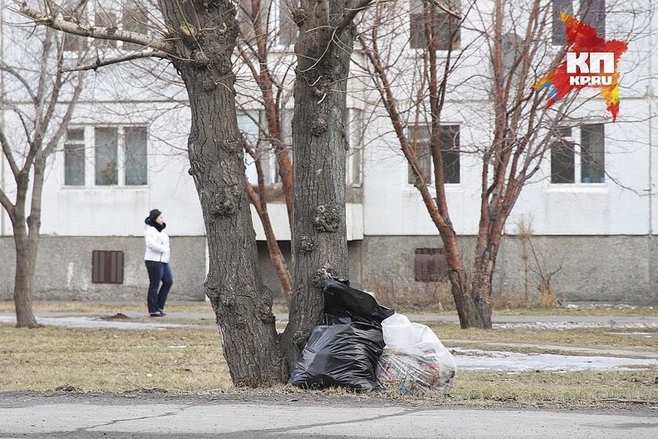 Новый мэр Красноярска поручил сделать город опрятным кзиме