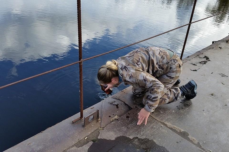 Запрещенный препарат ДДТ отыскали вводоемах Воронежского заповедника