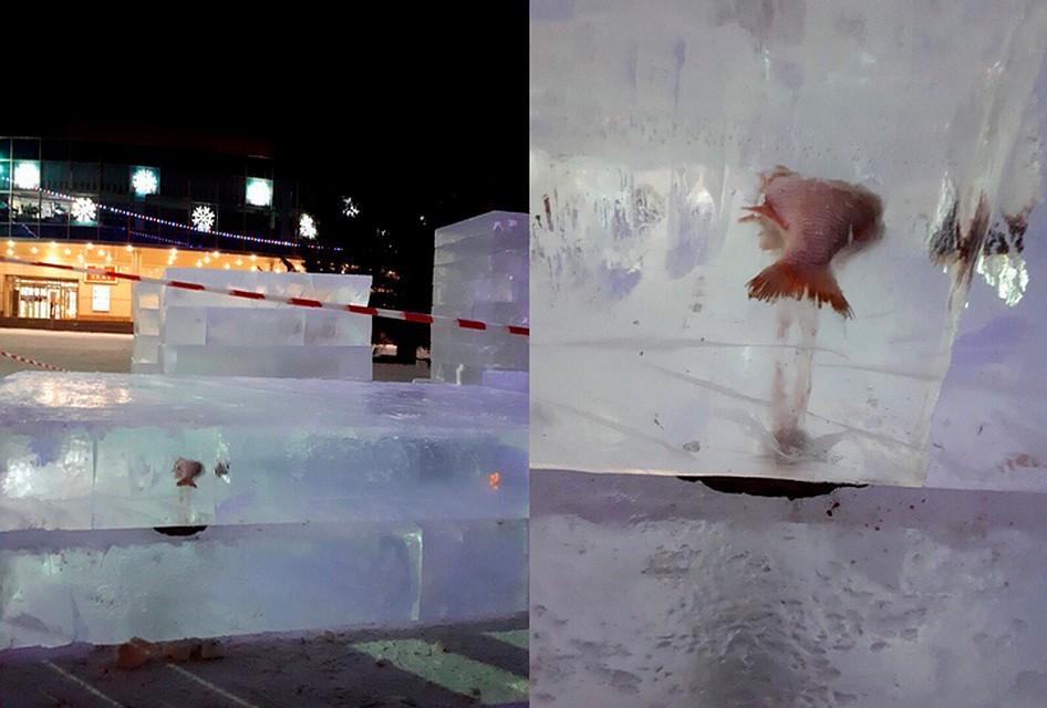 Лед скрупной рыбиной внутри привезли для возведения ледового городка вКопейске