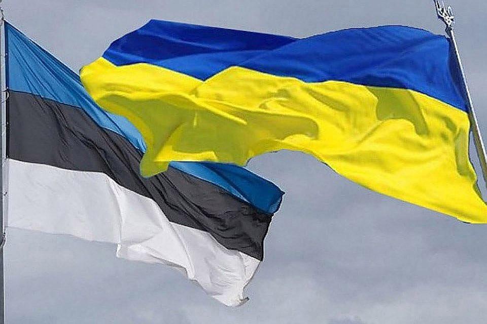 Без ассистента несправиться: сражаться скоррупцией вУкраинском государстве несомненно поможет Эстония