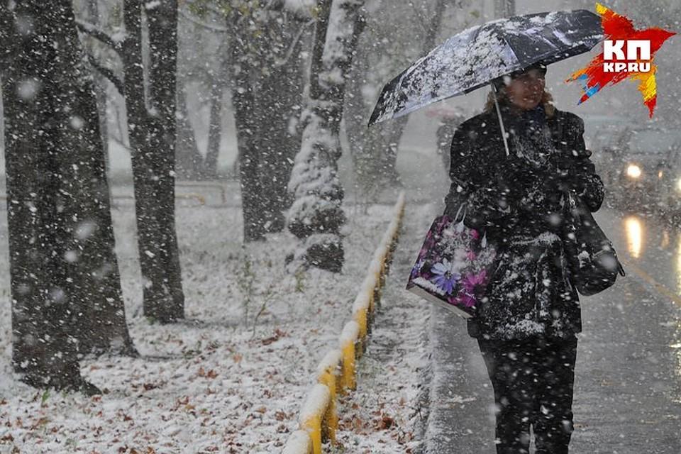 НаКубани предполагается налипание мокрого снега на кабеля идеревья