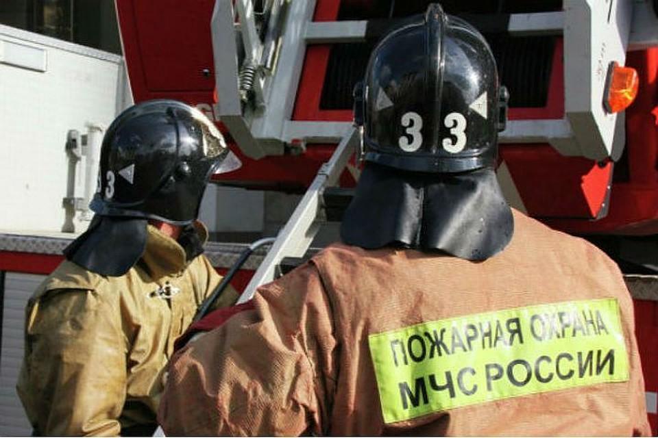 ВПетербурге два человека погибли впожаре вквартире наДунайском проспекте