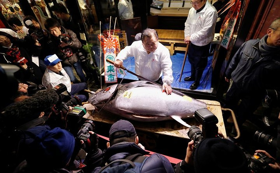 Голубой тунец весом 405кг продан нааукционе вЯпонии