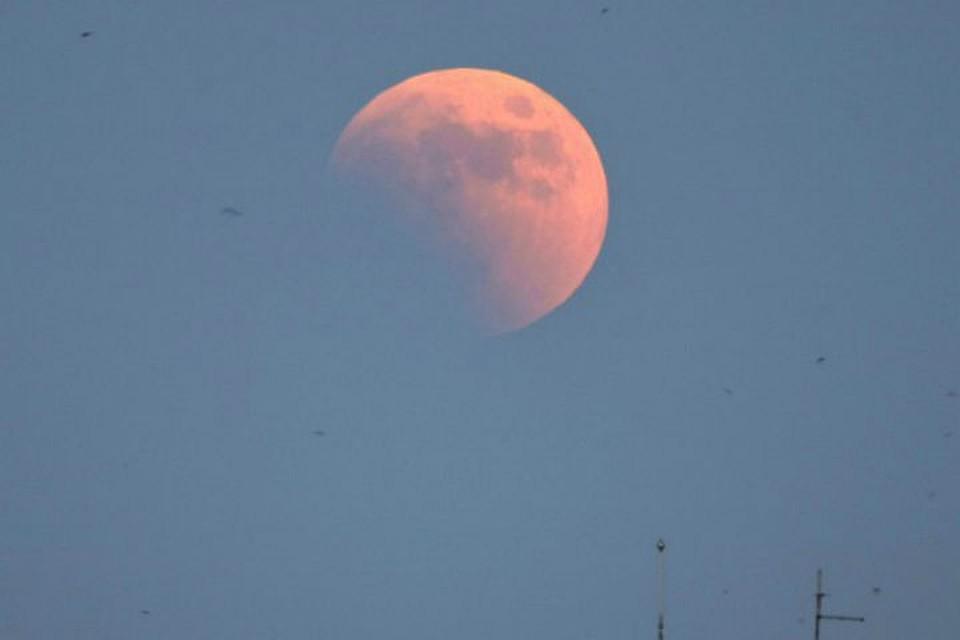 31января над Землей взойдет кровавая луна