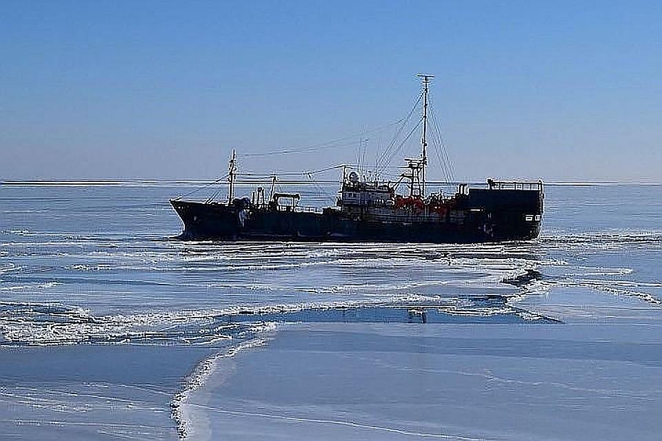 Семьям экипажа пропавшего судна «Восток» выплатят по1,5 млн руб.