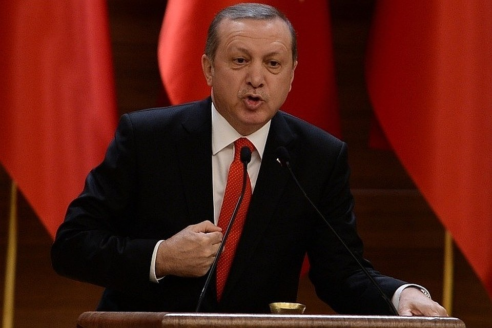 Эрдоган: УТурции и Российской Федерации нет противоречий поситуации всирийском Африне