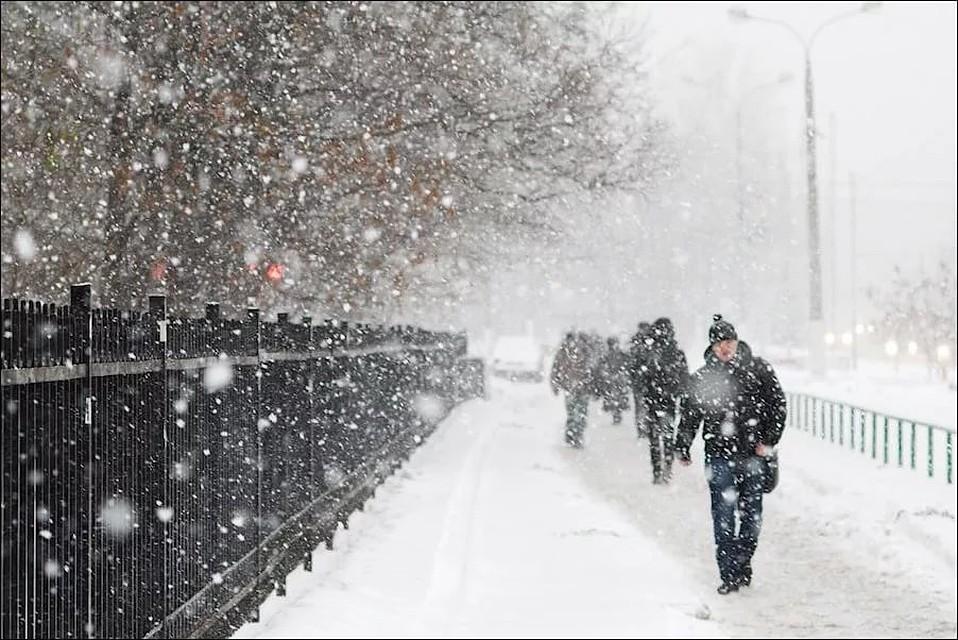 НаТюменскую область надвигаются метель, снегопад исильный ветер