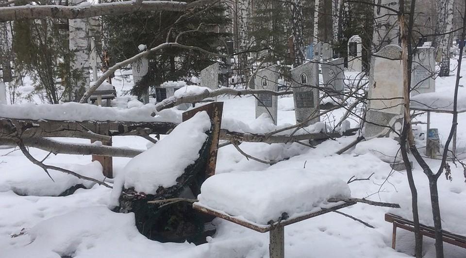 ВТюмени засвалки оштрафовали руководителя кладбища