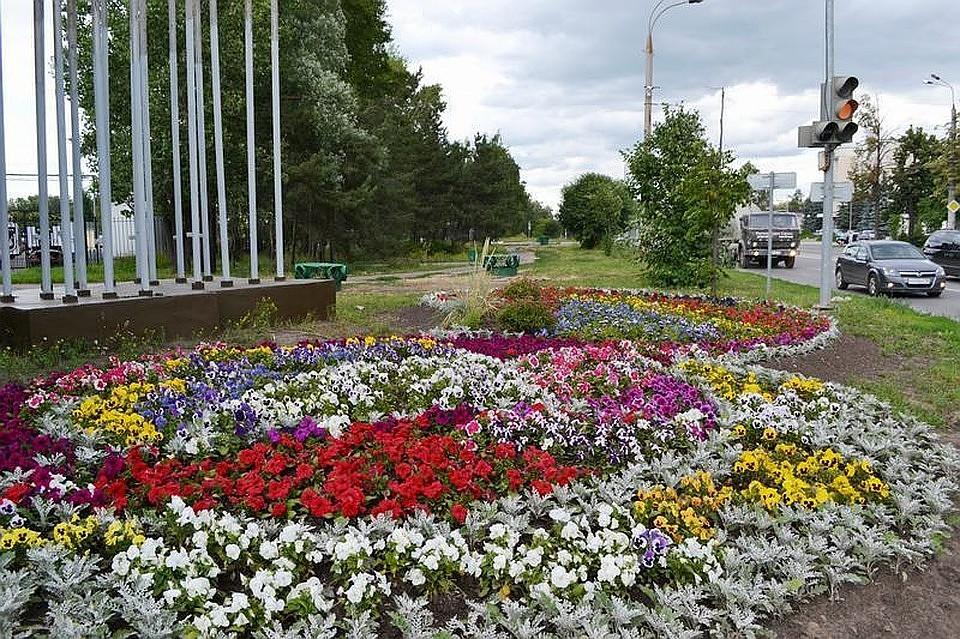 Цветочное оформление Казани в этом году обойдется в153 млн руб.