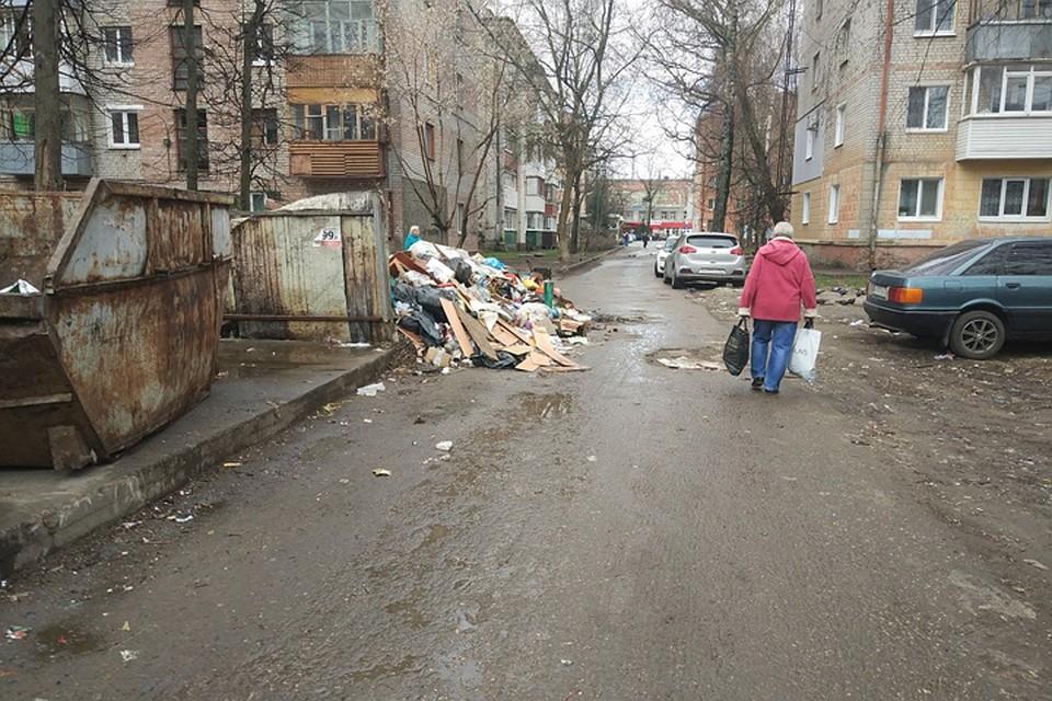 Замусорный адвцентре Брянска накажут коммунальщиков
