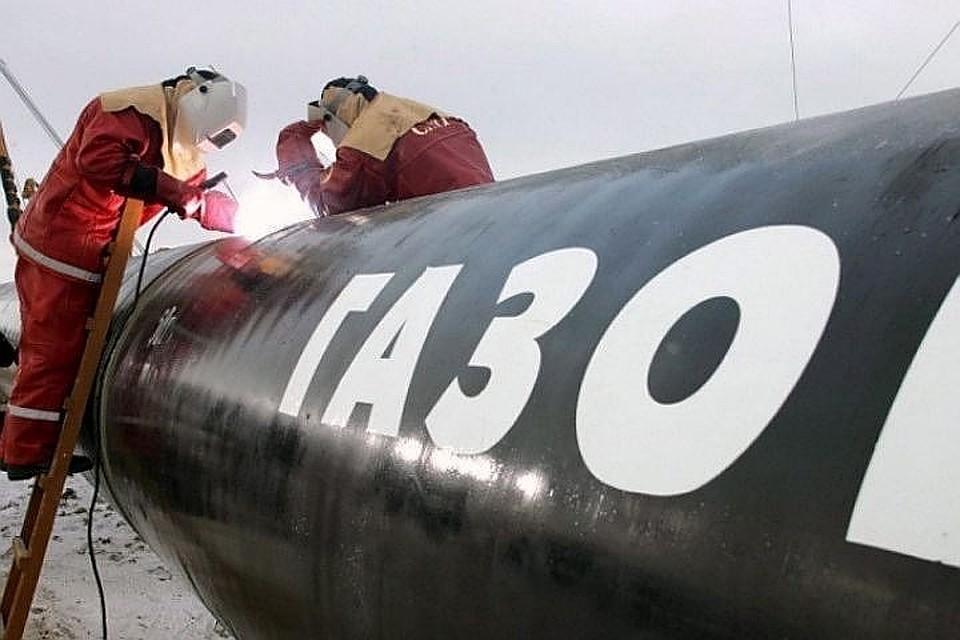 ВДании восстали против «Северного потока-2», затягивают строительство— Путин необрадуется
