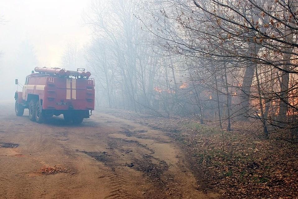 Пожары неугрожают критическим объектам вЧернобыльской зоне— Шмыгаль