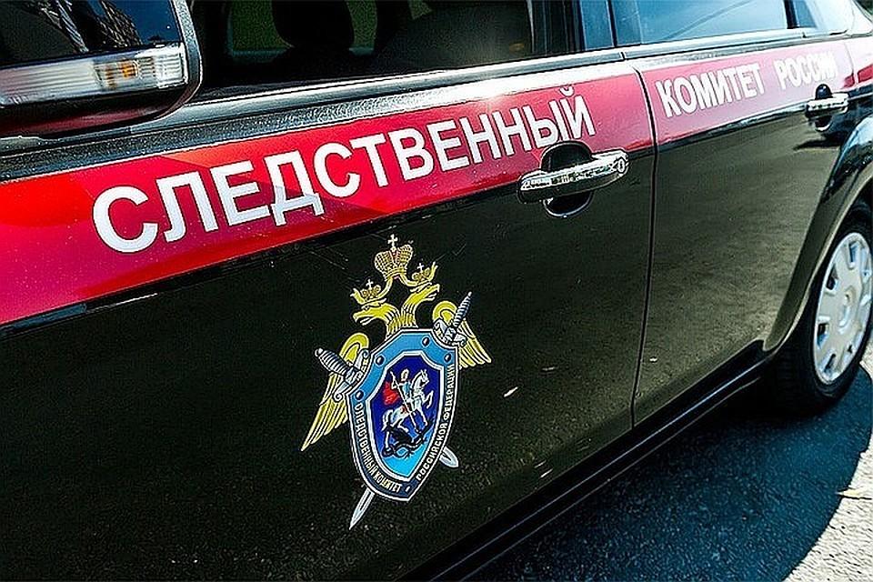 Уподозреваемых впровокации вовремя «Бессмертного полка» прошли обыски