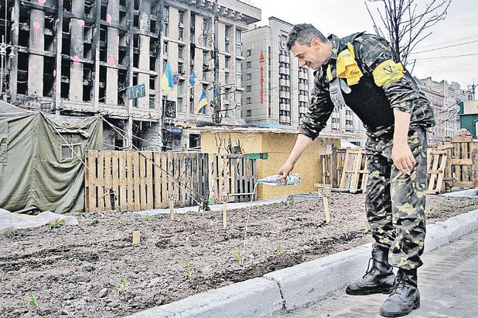 Майдан онлайн трансляция вебкамеры Майдана Незалежности