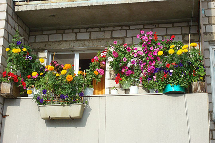 Парень из Гродно залез на чужой балкон и украл женские кроссовки.