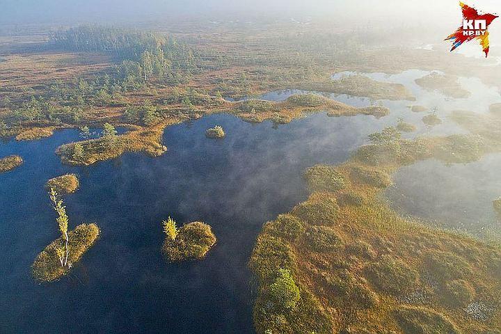 Здесь сохранились уникальные виды растений и животных. Фото: Вячеслав МАЗАЙ