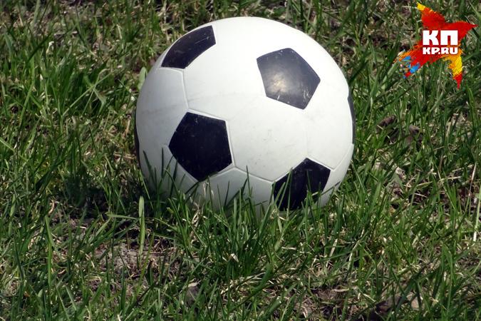 Автор петиции ороспуске футбольной сборной согласился увидеться сМутко