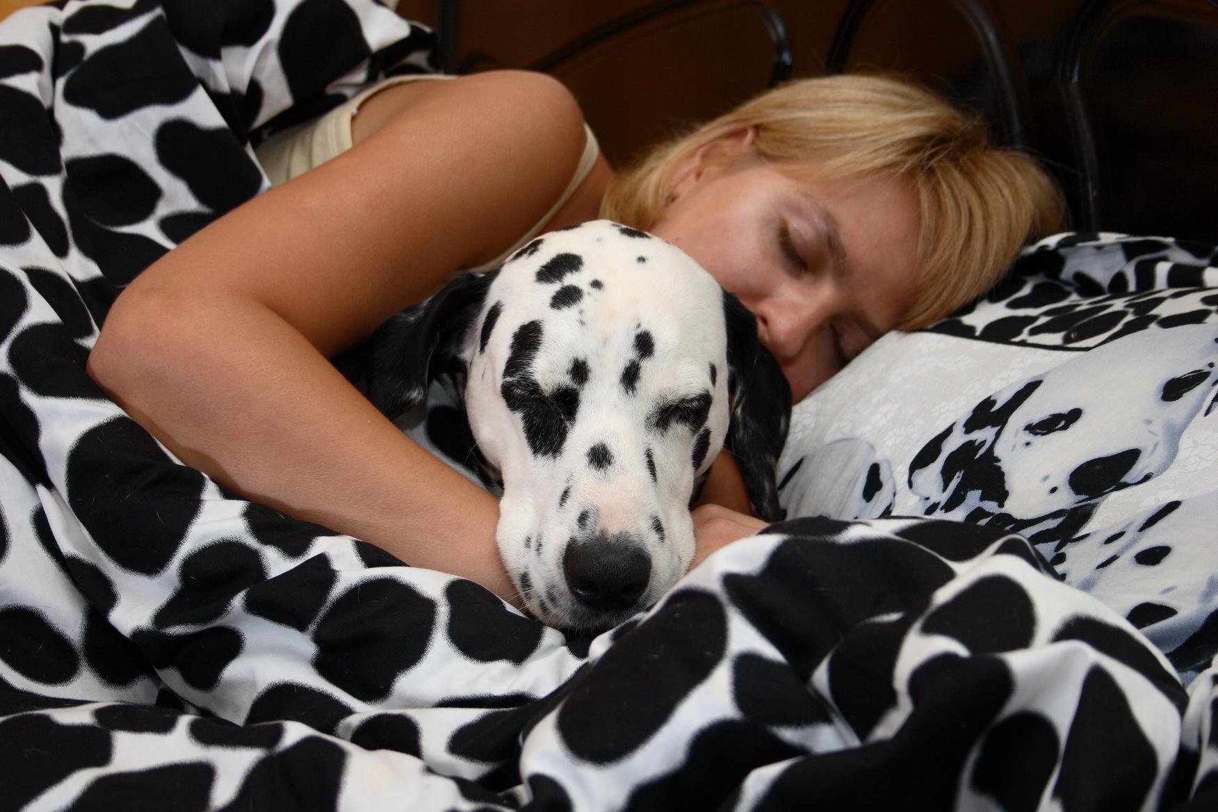 Буквально 10 минут на простые упражнения перед сном - и крепкий сон обеспечен.