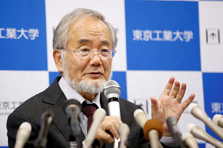 Есинори Осуми открыл механизм аутофагии