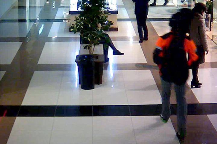 """На кадре с видеокамеры торгового центра """"Европа"""" виден задержанный. Фото: sk.gov.by"""