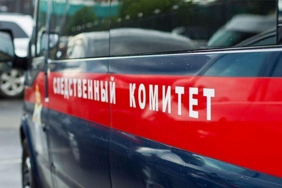 """Следственный комитет проверяет книги """"Свидетелей Иеговы"""" на Лужской"""