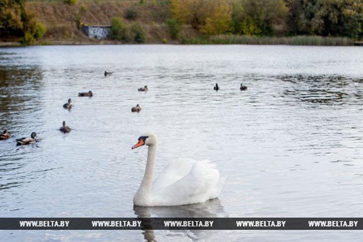 Навыходных в Белоруссии будет до 6-ти градусов мороза