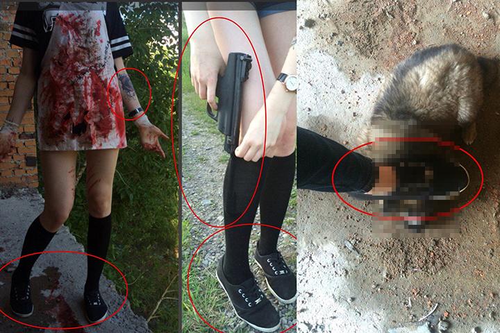 В Хабаровске разыскивают живодерок, убивавших животных на камеру