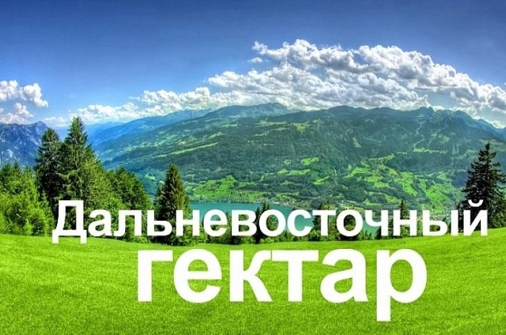 Жителям Хабаровского края помогут оформить «дальневосточный гектар»
