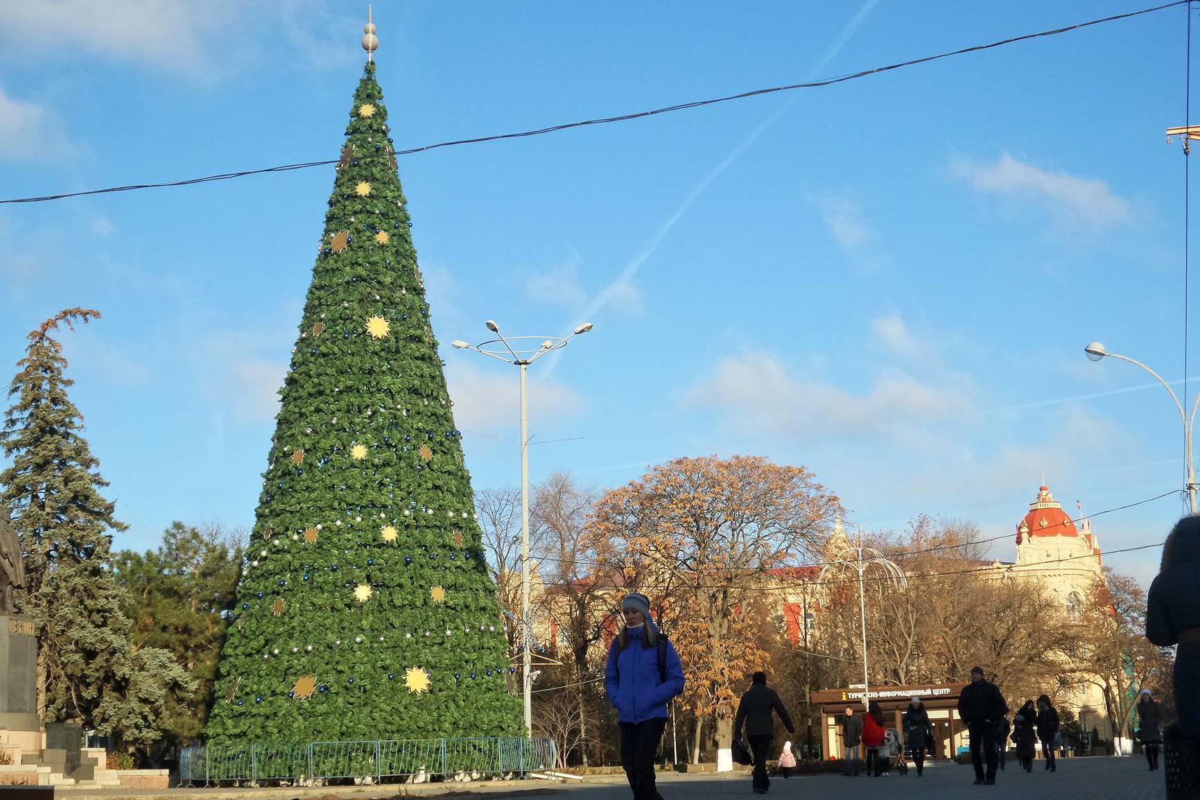 Центральная городская елка Ростова уже установлена.