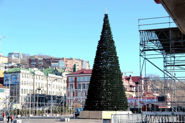 На центральной площади Владивостока начали сооружать главную елку Приморского края